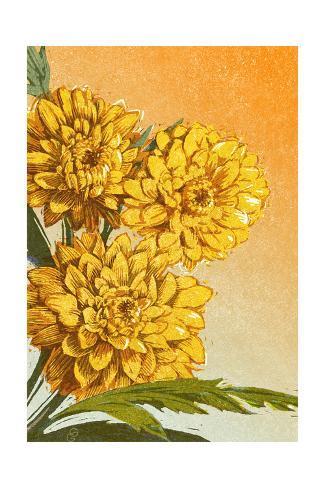 Close-Up of Golden Chrysanthemums Art Print