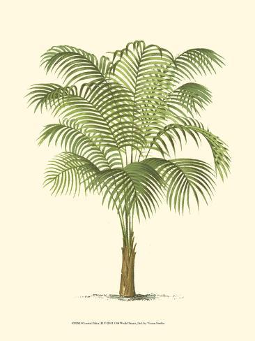 Coastal Palm III Art Print