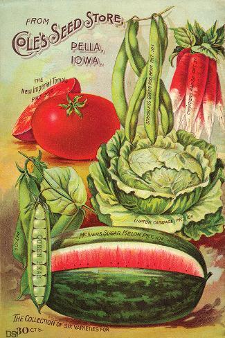 Cole's Seed Store Pella Iowa Pingotettu canvasvedos