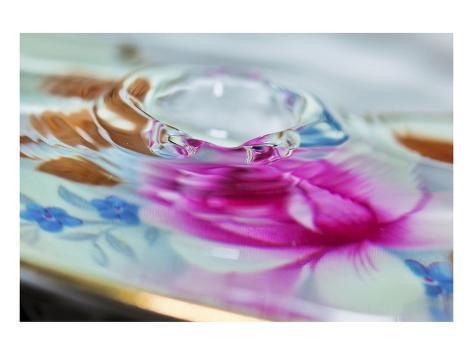 Floral Splash Art Print