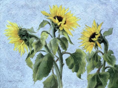 Sunflowers, 1996 Stampa giclée