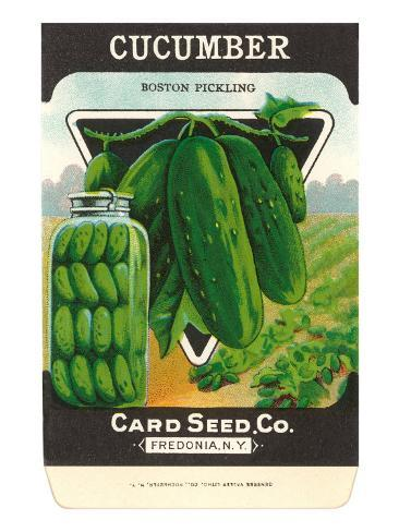 Cucumber Seed Packet Taidevedos