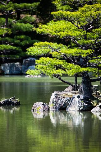 Japanese Zen Garden in Kinkakuji Temple Park, Kyoto Photographic Print