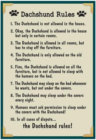Dachshund House Rules Posters at AllPosters.com