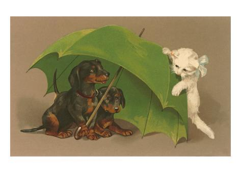 Dachshund Puppies Under Umbrella with Kitten Art Print