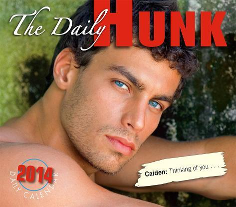 Daily Hunk - 2014 Box Calendar Calendars