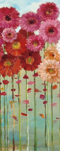 Daisies Spring II Art Print