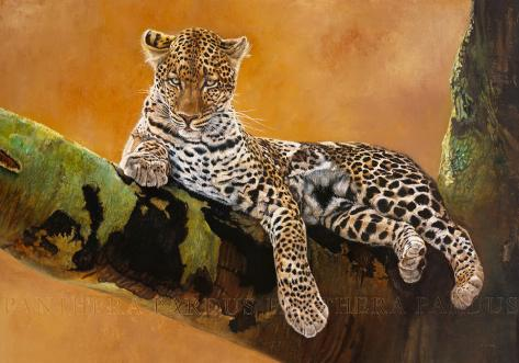 Léopard du Serengeti Art Print