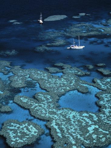 Great Barrier Reef, Queensland, Australia Photographic Print