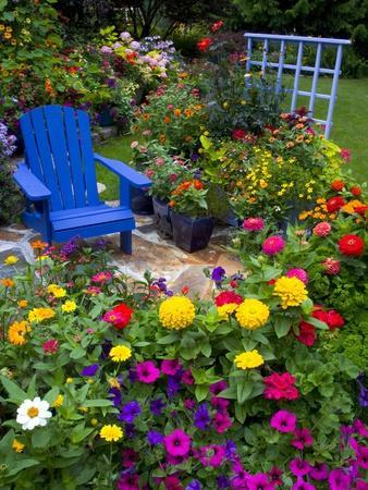 Backyard Flower Garden With Chair Photographic Print by ...