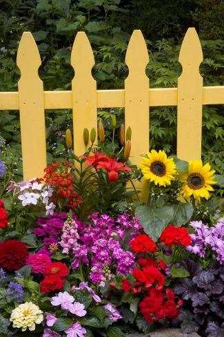 Flower Garden and Picket Fence Valokuvavedos