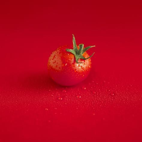 A Wet Tomato on a Red Surface Photographic Print