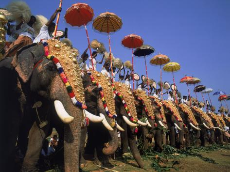 The Great Elephant March, Trissur, Kerala, India Photographic Print