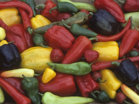 A Variety of Heirloom Sweet Peppers Photographic Print