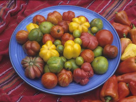 Variation in Tomatoes, Mixture of Rainbow Heirloom Varieties Photographic Print