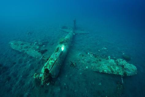 A World War Ii Japanese Zero Airplane Sunken Near the Willaumez Peninsula on New Britain Island Stampa fotografica