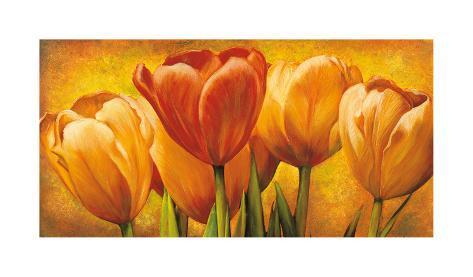 Bouquet of Orange Tulips Giclee Print