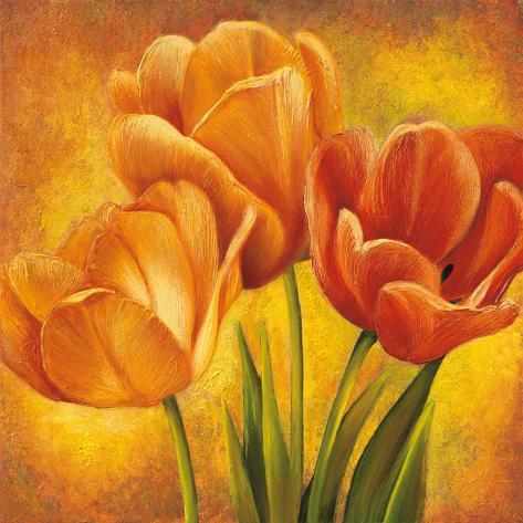 Orange Tulips II Framed Art Print