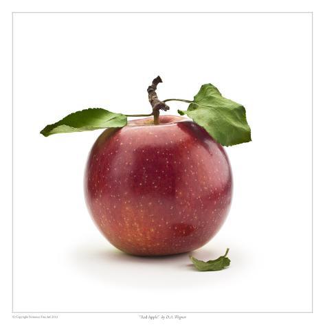 Red Apple Art Print