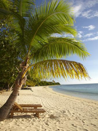 Beach and Palm Trees, Plantation Island Resort, Malolo ...