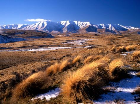 Tussocks and Hawkdun Range, Central Otago, New Zealand Photographic Print