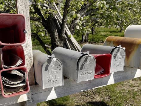 Mailboxes, Manson Area, Washington State, United States of America, North America Valokuvavedos