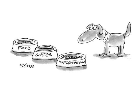 A dog is given three bowls:  'Food,' 'Water,' and 'Information.' - New Yorker Cartoon Premium-giclée-vedos
