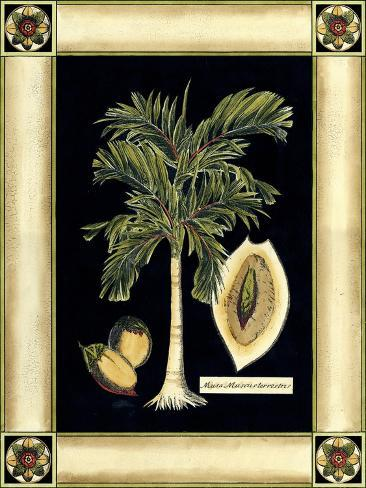 Paradise Palm V Premium Giclee Print