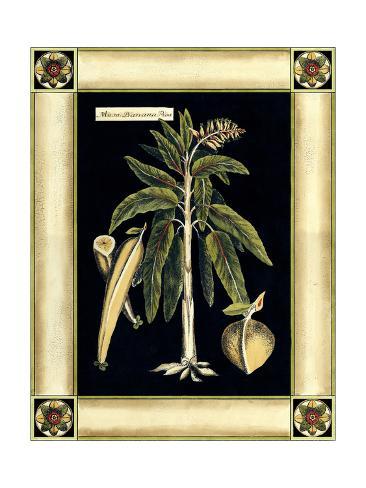 Paradise Palm VI Art Print