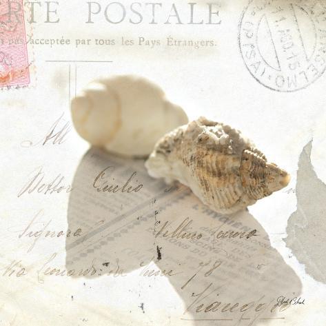 Postal Shells I Art Print