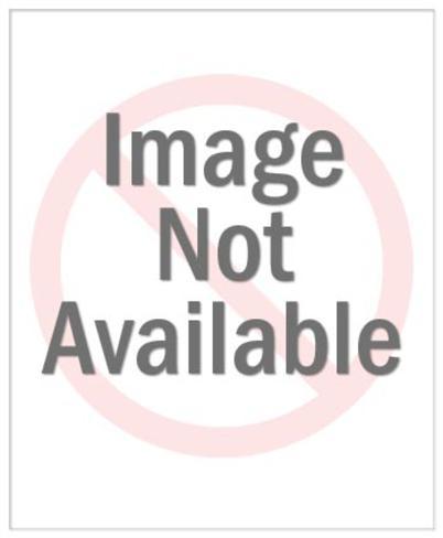 Def Leppard - Rick Savage Poster