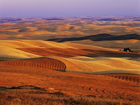 View of Colorful Palouse Farm Country at Twilight, Washington, USA Photographic Print