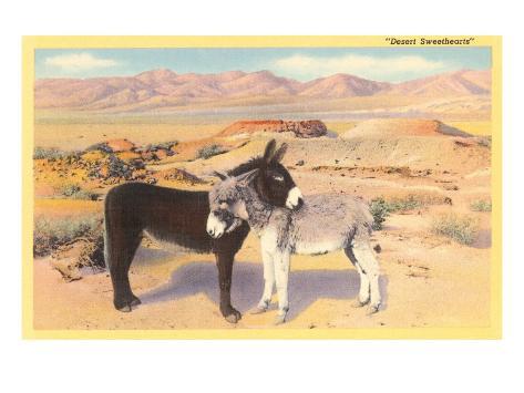 Desert Sweethearts, Nuzzling Burros Art Print
