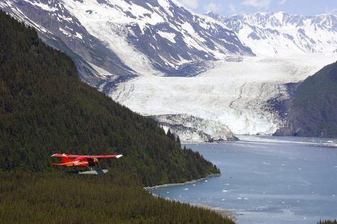 Dehavilland Beaver Floatplane Flying Towards Barry Glacier Harriman Fjord Chugach Nf and Mtns Pws Photographic Print
