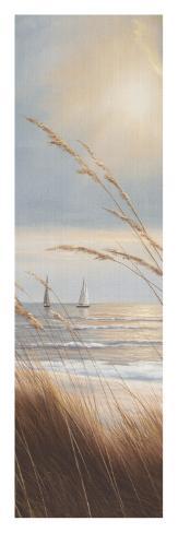 Sailboat Breezeway Panel II Art Print