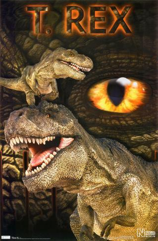 Dinosaur - T-Rex Poster