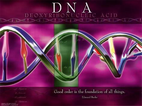 DNA Art Print