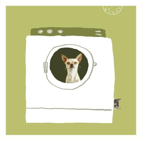 Dog in Dryer Wall Decal