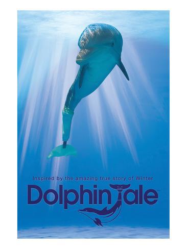 Dolphin Tale II Art Print