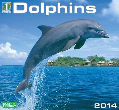 Dolphins - 2014 Deluxe Calendar Calendars
