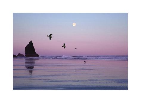 Canon Beach Sunset Giclée-vedos