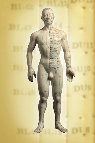 Chinese Acupuncture Model Lámina fotográfica