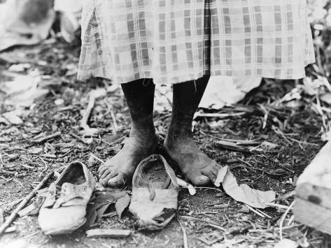 Cotton Picker, 1937 Photographic Print