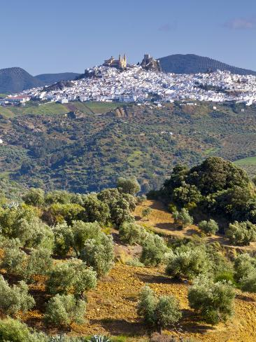 Elevated View Towards the Picture Perfect Hilltop Town of Olvera, Olvera, Cadiz Province, Andalusia Photographic Print