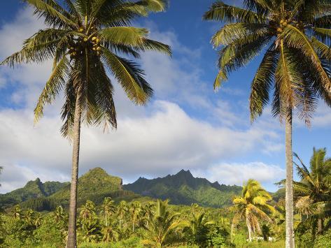 Rarotonga, Cook Islands, South Pacific Photographic Print