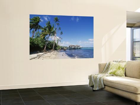 Coconuts Beach Resort Apia Samoa