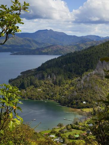 Queen Charlotte Track, Marlborough Sounds, South Island, New Zealand Photographic Print