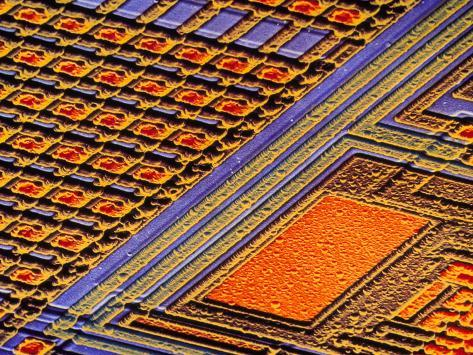 Coloured SEM of Surface of An EPROM Silicon Chip Photographic Print