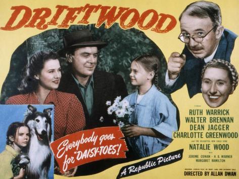 Driftwood, Ruth Warrick, Dean Jagger, Natalie Wood, Walter Brennan, Charlotte Greenwood, 1947 Photo