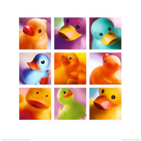 Duck Family Portraits Art Print